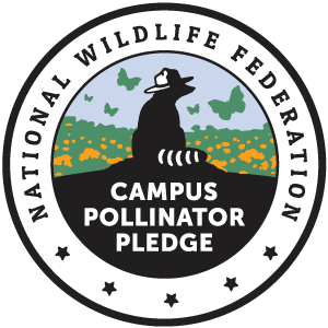The National Wildlife Federation's Campus Pollinator Pledge badge, featuring a raccoon wearing a park ranger hat surrounded by a field of flowers and butterflies.