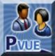 PVue Icon