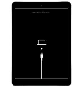 iPad Restore Screen